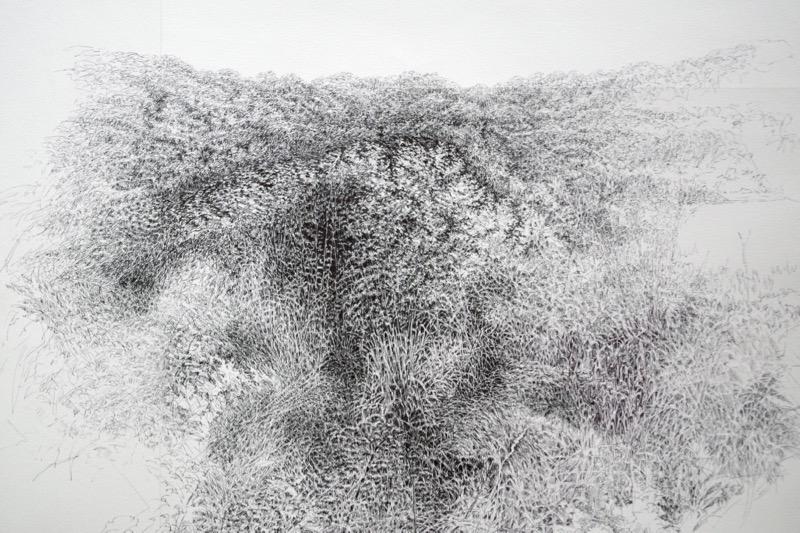 Fondrière, 2014, ballpoint pen on paper, 65 x 90 cm.