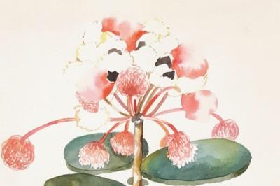 Sans titre, 2018, aquarelle sur papier, 31x23 cm/Untitled, 2018, watercolors on paper, 31x23cm