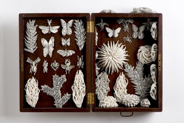 Nature Box, porcelain, black stain, antique box, 67x50x18 cm // Nature Box, porcelaine, taches noires, boite antique, 67x50x18 cm
