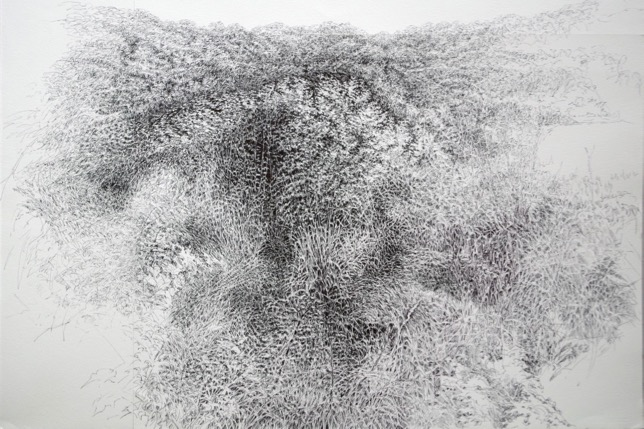 Fondrière, 2014, ballpoint pen on paper, 65 x 82 cm, EUR 1,000
