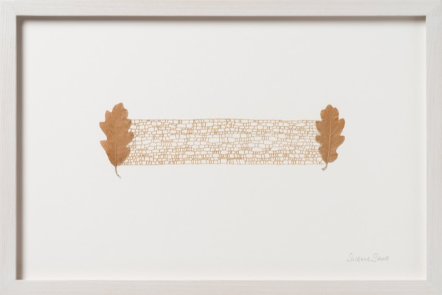 Susanna Bauer - 1 : 1, 2021, oak leaves, cotton thread, 28 H x 42 W cm (framed),(photo_www.art-photographers.co.uk)
